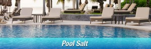 Pool salt delivery