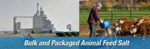 Animal and agricultural salt delivery nationwide