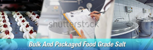 Bulk and packaged food grade salt delivery