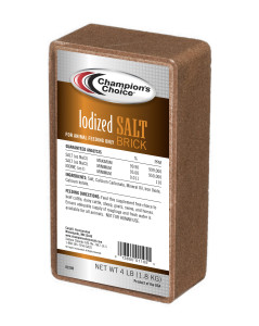 Iodized salt brick